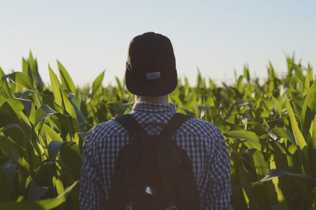 evangelism worker in the harvest